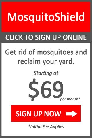 button mosquito control